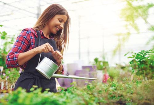 Ausbildung Als Gärtner