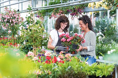 Ausbildung Gärtner Zierpflanzenbau